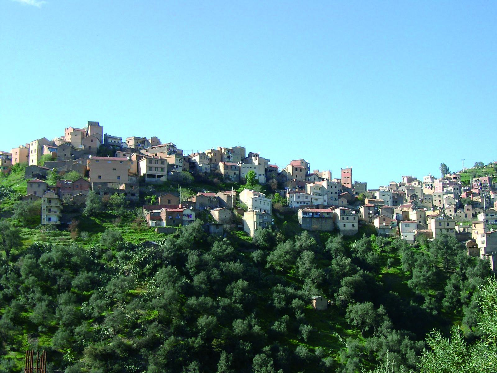 Algeria 2004 0260005348